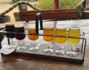 sample beers at feral brewery