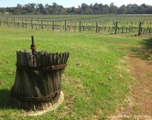 original grape crusher at entopia wines