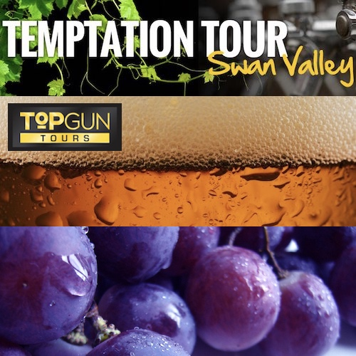 Beer and Wine Tours