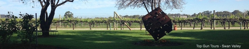 Vines & Vineyard at Swanbrook Winery